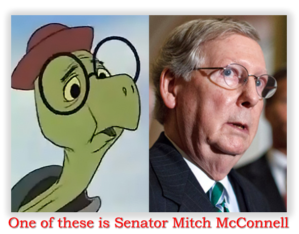 mcconnell180219